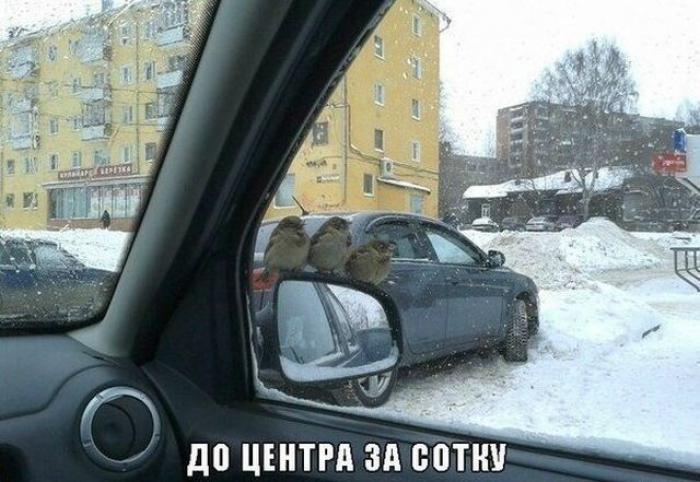 автостопом